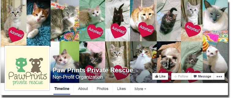 Paw-Prints-Private-Rescue-Facebook-Cover-Photo-Feature-Service