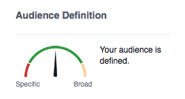 audience-definition