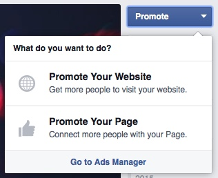 promote-button-facebook