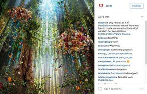 b2b-success-instagram-adobe-1